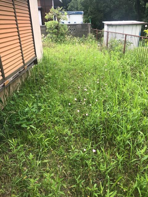 空き家 草刈り